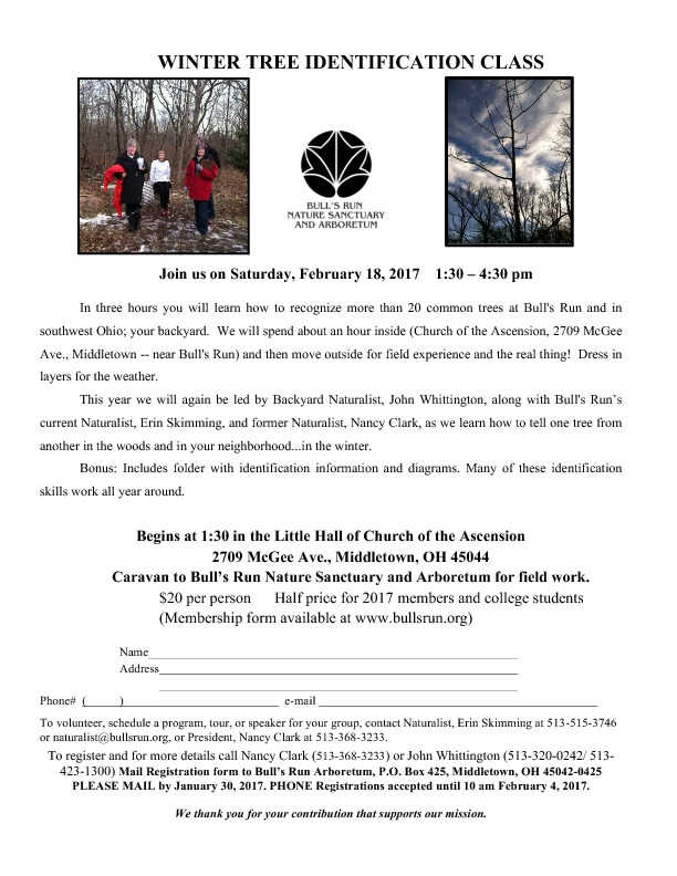 Winter Tree ID flyer 2016-thumbnail